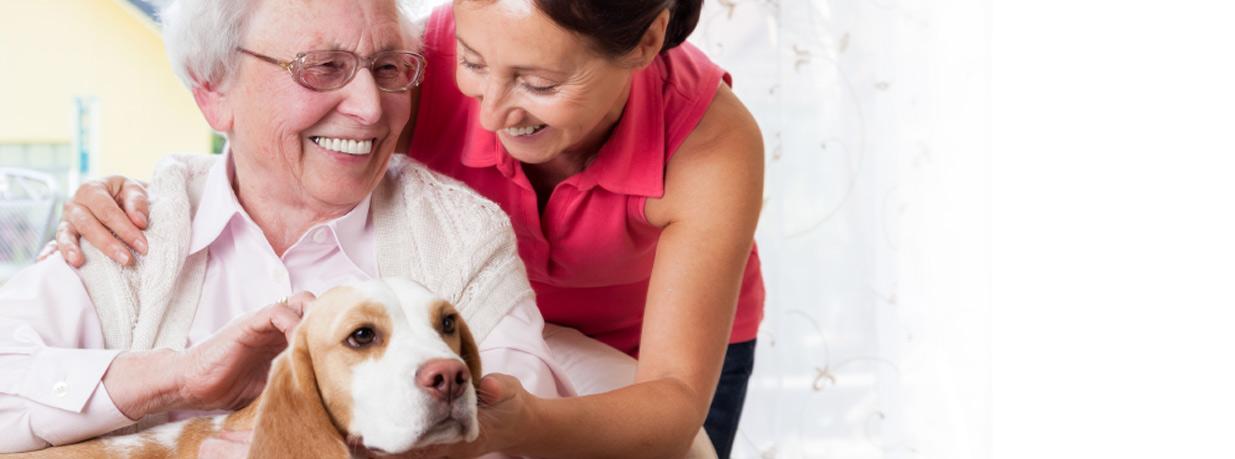 elderly care home health